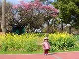 山王公園で