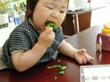 ランチを食べる