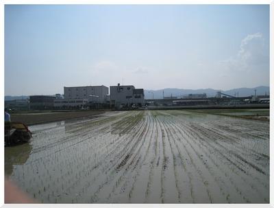 taue20122