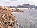 冬の西の湖