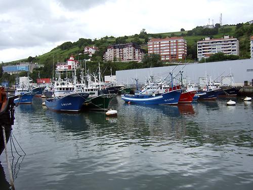 bermeo-barcos1