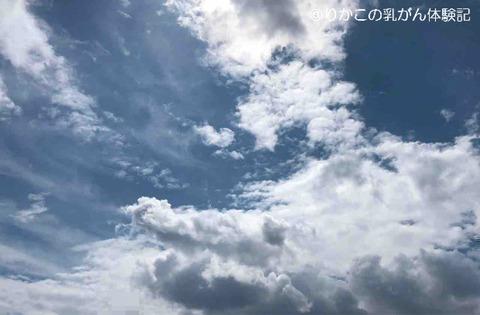 2018/05/05 朝