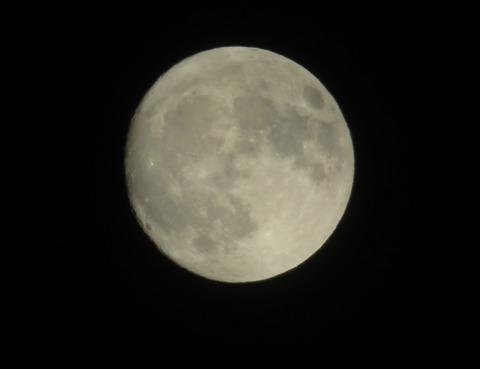 月明かり ②