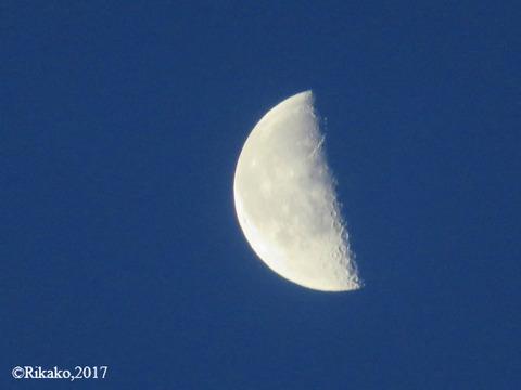 早朝の月 ②