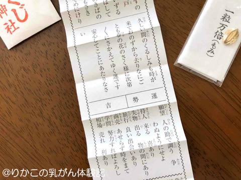 2020/01/02 元日・初詣 ③