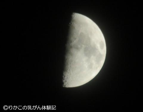 2018/01/25 上弦の月