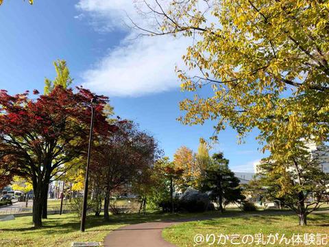 2019/10/16 がんサロン ①