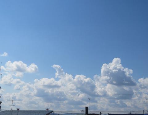初夏のような朝の空 tori