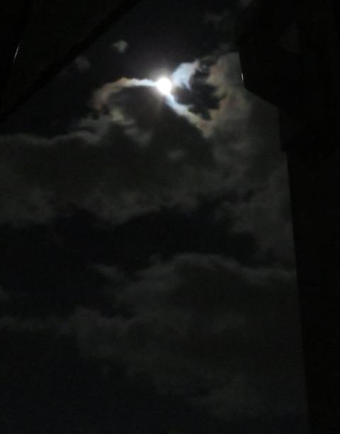 月明かり ①