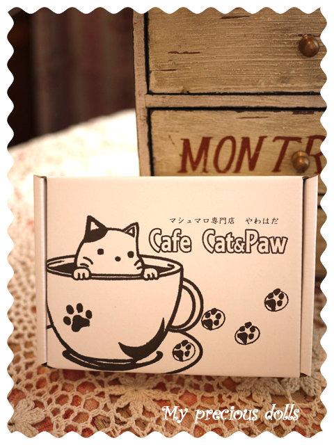 catpaw1