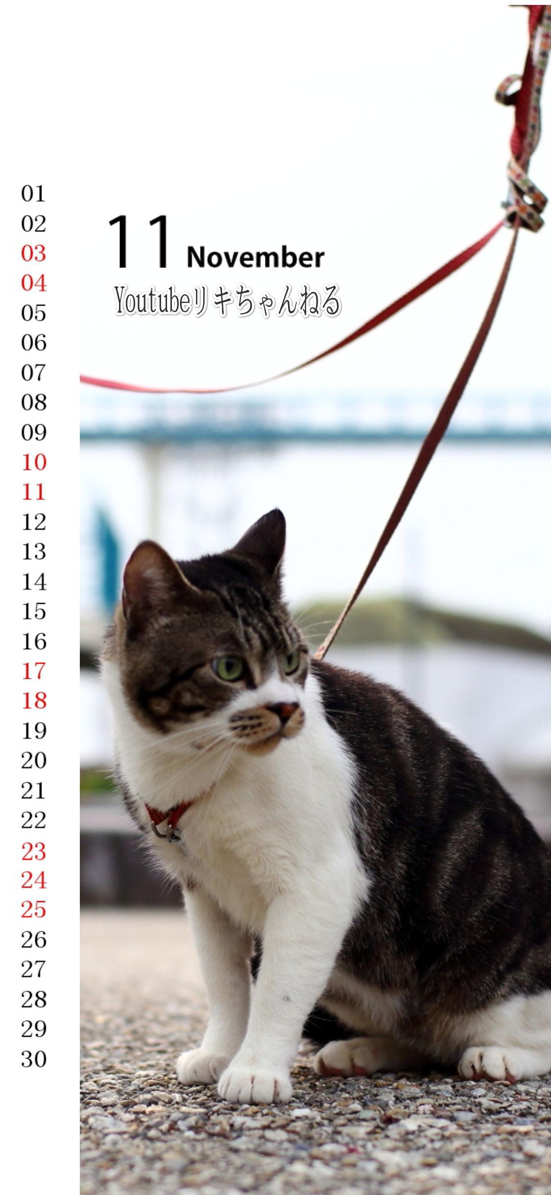 2018年11月カレンダー再配布 スマホ用壁紙もプレゼント リキ