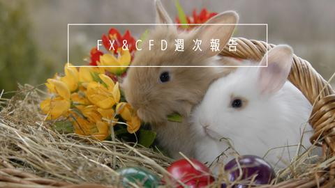 FX&CFD週次報告20210104