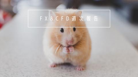FX&CFD週次報告20210208