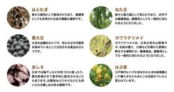 hatomugi_09