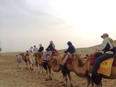 Camel_Ride_05