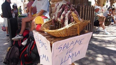 リャマのサラミ