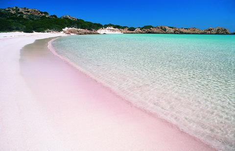 Pink_Sand_Beach