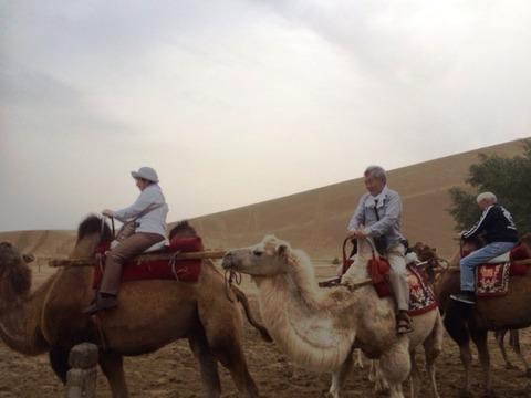 Camel_Ride_03