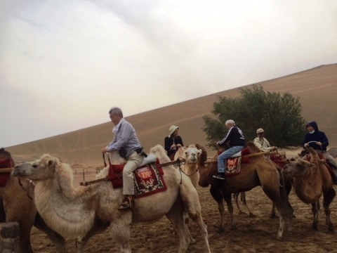 Camel_Ride_04