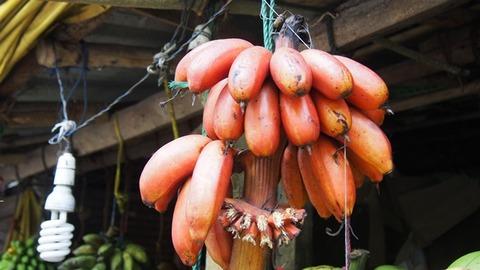 Red_Banana
