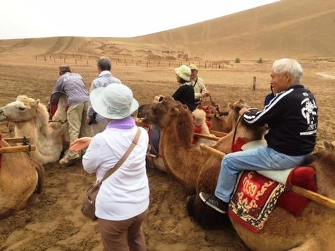 Camel_Ride_01