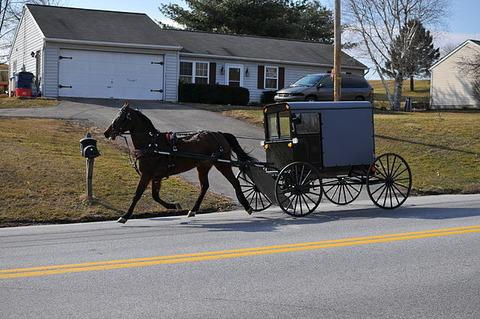 Amish_02