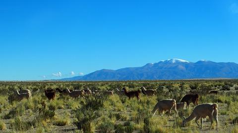 アルゼンチン北部2