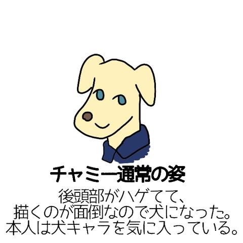 chamii-dog