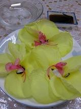 オグラの花