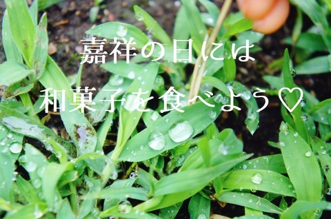 IMG_-si6ara