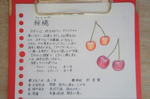 aDSC05251