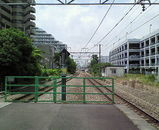 28c84d32.jpg