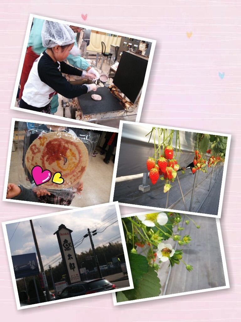1/11   イチゴ狩り   4:16 pmの画像
