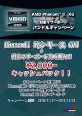 20101127amd-campaign