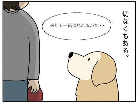 桜と老犬03