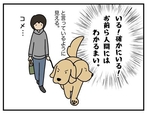 野生の本能06