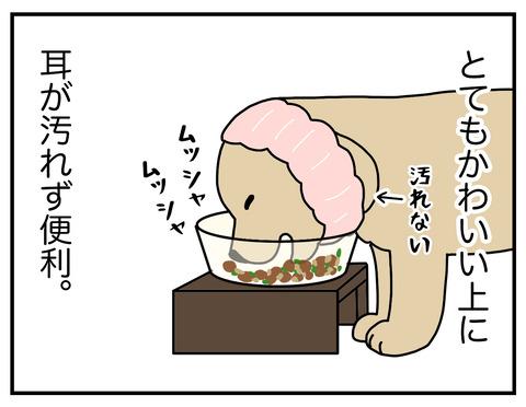 耳の長い犬05