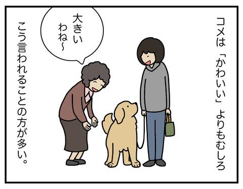 大きい01