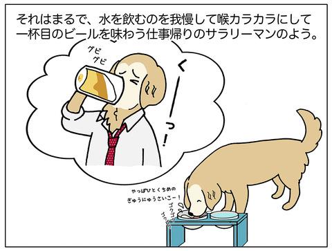 一杯目のビール2_05