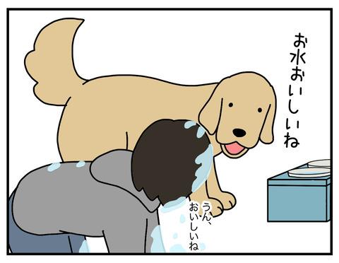 おいしい水07