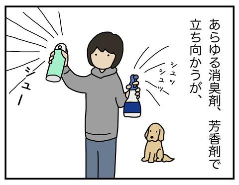 玄関犬臭04