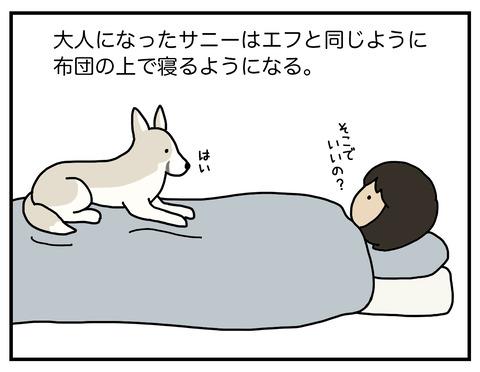 寝場所03