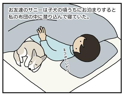寝場所01