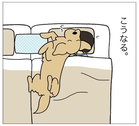 まくらに寝る03