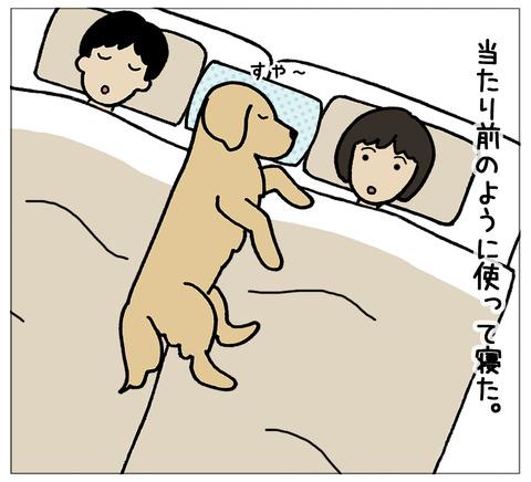 寝相の違い08