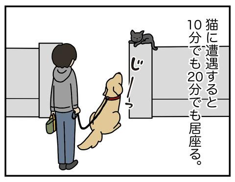 野生の本能02