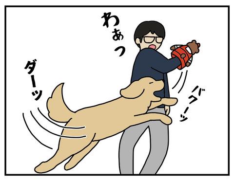 冷静な犬02