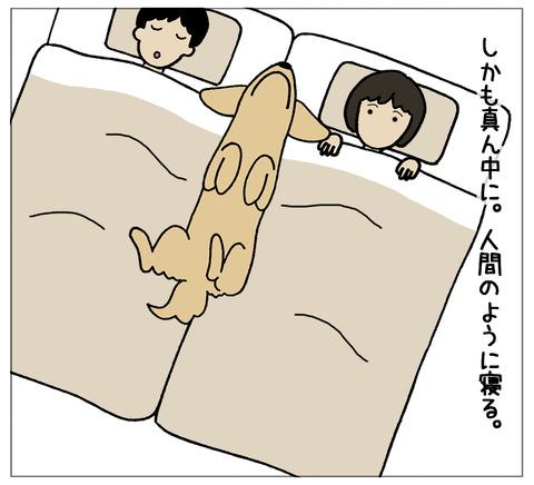 寝相の違い05