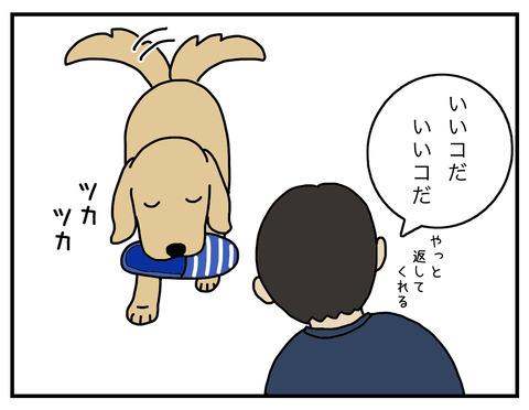 得意げな犬02
