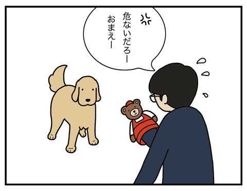 冷静な犬03